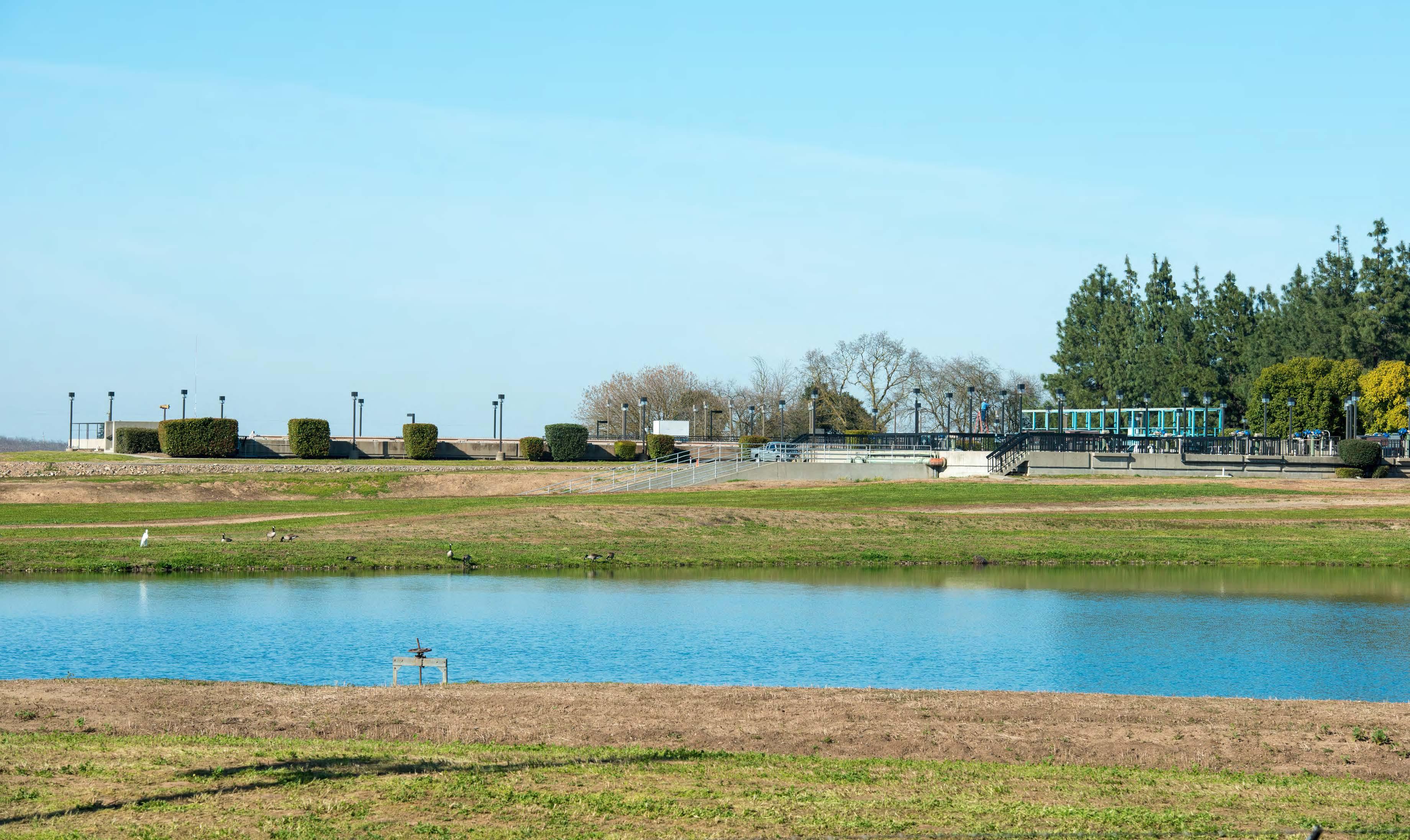 Overview w Pond